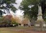 University of South Carolina--Columbia