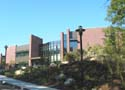 Brandeis University - International Business School