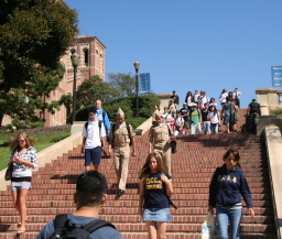 University of California--Los Angeles