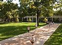 Rockhurst University