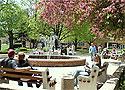 York College of Pennsylvania campus