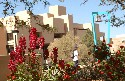University of New Mexico campus