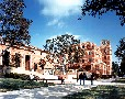 University of California, Los Angeles - UCLA School of Law