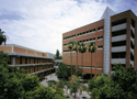 Arizona State University - W.P. Carey School of Business